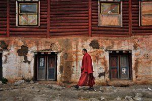 18---Lama-walks