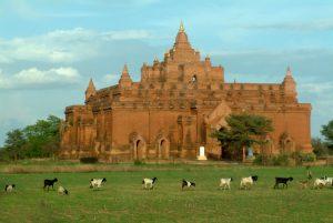 Bagan-09