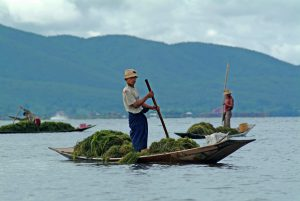 Inle-026