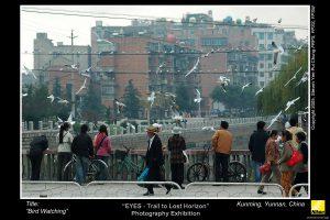 Kunming_13