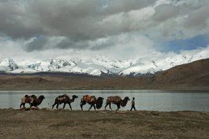 South-Xinjiang-22