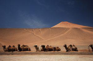South-Xinjiang-24
